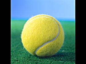 теннис.jpg (280x210, 8Kb)