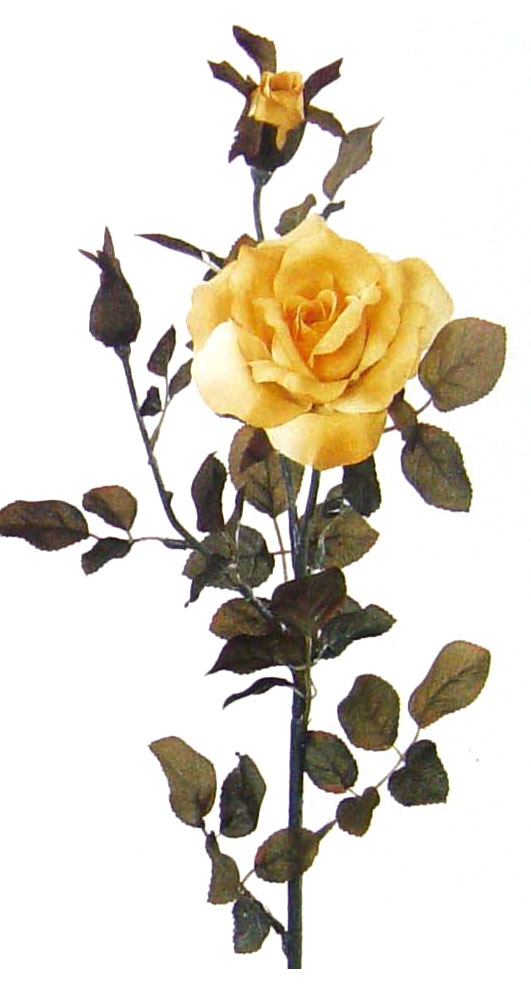 zeltaja rozo4ka.jpg (531x991, 69Kb)