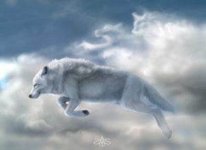 волк.jpg (300x218, 10Kb)