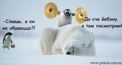 prikols_com_ru_2001056.jpg (470x251, 15Kb)