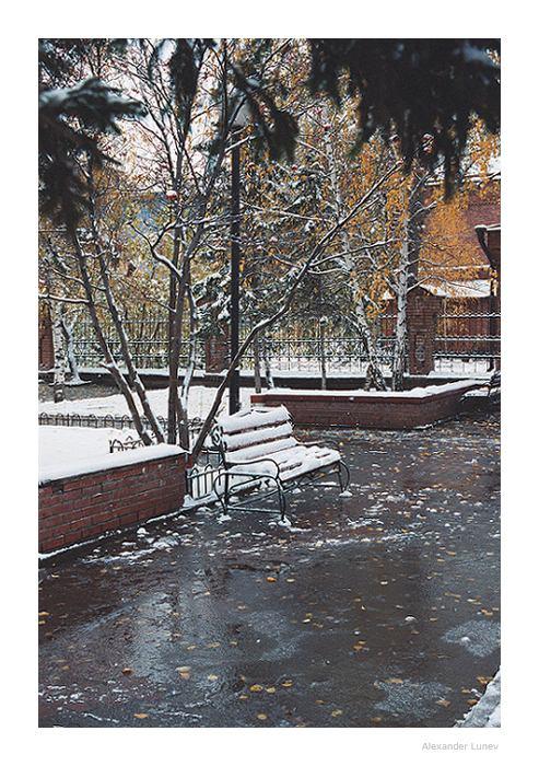 Снег в городе.jpg (493x700, 96Kb)
