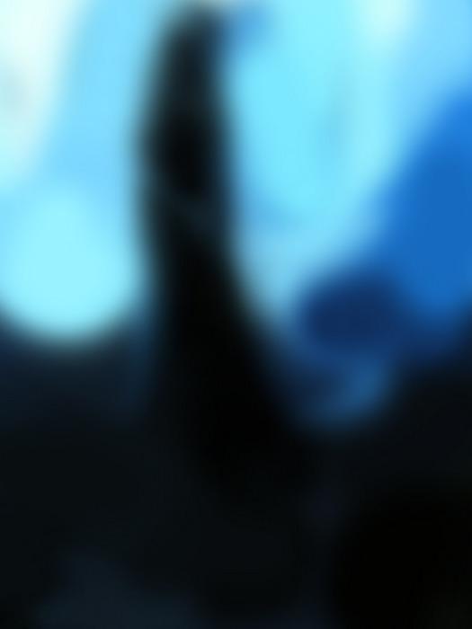 Fantasy.jpg (525x700, 89Kb)