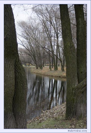 trees.jpg (366x534, 75Kb)