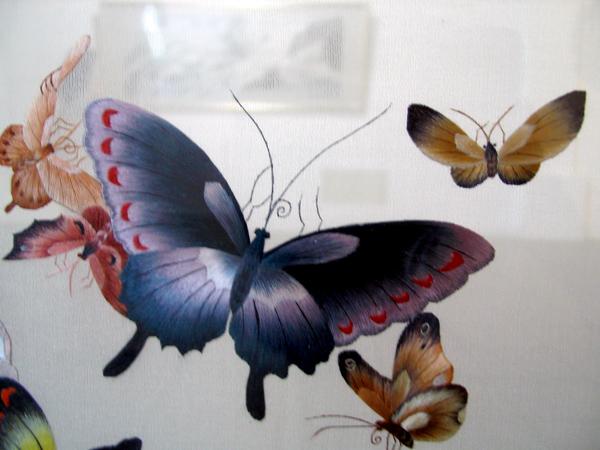 еще бабочки