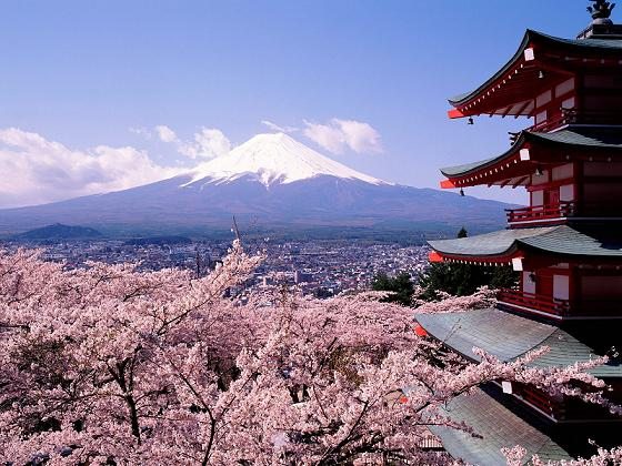 Cherry-Blossoms-and-Mount-Fuji,-Japan.jpg (560x420, 64Kb)
