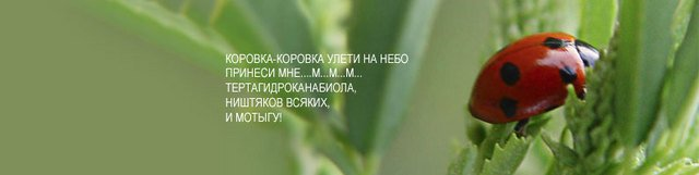 korovka.jpg (640x161, 15Kb)