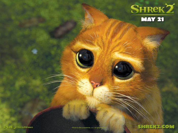 Shrek2.jpg (700x525, 171Kb)