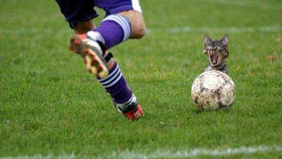 футбол.jpg (400x225, 42Kb)