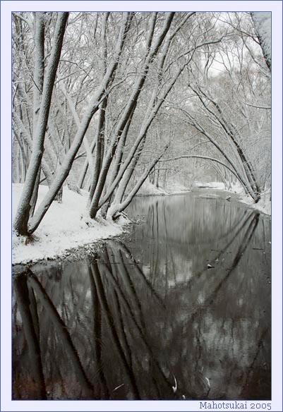 reflections.jpg (401x584, 86Kb)