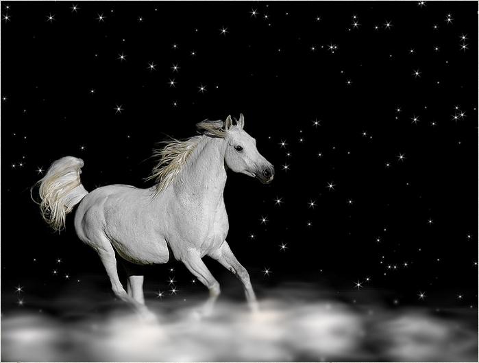 лошадь на небе.jpg (699x529, 92Kb)