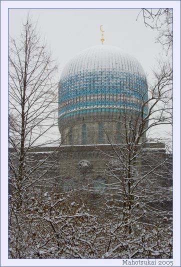 mosque.jpg (362x534, 86Kb)