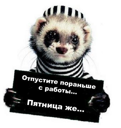 3161737_patnica_poranse.jpg (415x441, 86Kb)