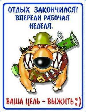 humor_from_lifeinet-1133116233_i_8002_full.jpg (300x388, 44Kb)