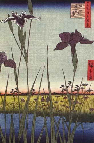 Андо Хиросигэ Ирисы в Хорикири,1857.jpg (330x500, 44Kb)