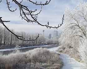 зима.jpg (280x224, 10Kb)