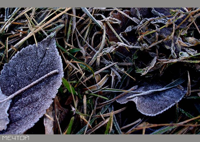 зима1.jpg (700x499, 145Kb)