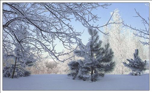 зима1.jpg (505x309, 44Kb)