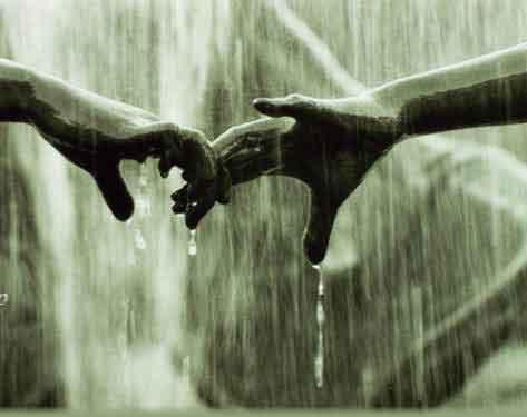 rainn.JPG (473x375, 17Kb)