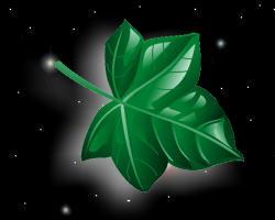 leaf.jpg (250x200, 6Kb)