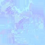 4102245_golub225.jpg (150x150, 13Kb)