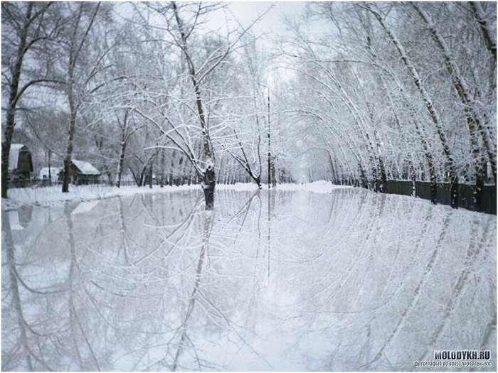 снег.jpg (700x525, 56Kb)