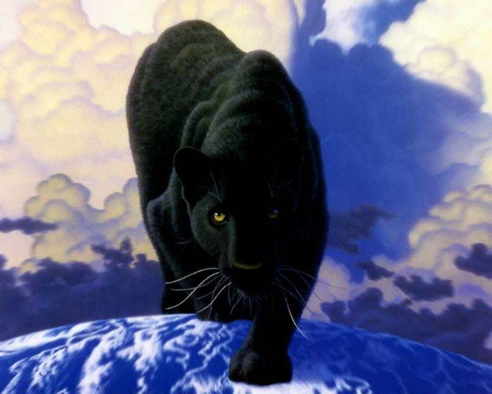 859935_panther[1].jpg (700x560, 44Kb)