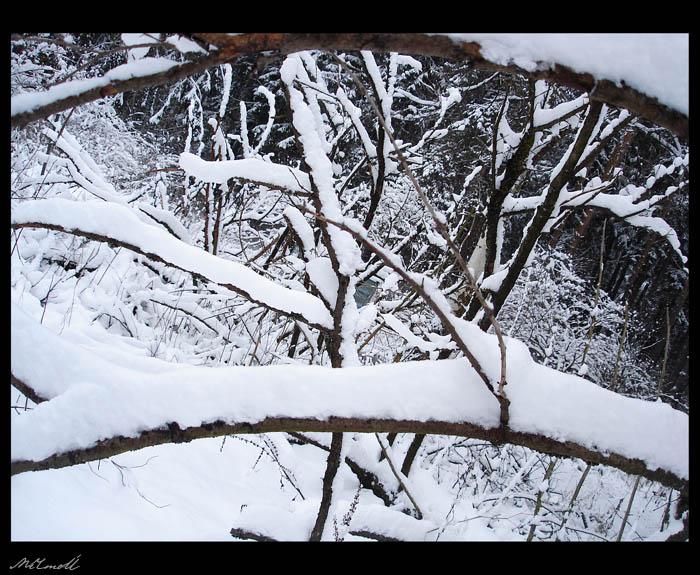снег.jpg (700x575, 147Kb)