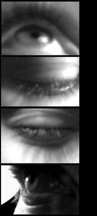 eyes.jpg (192x427, 26Kb)