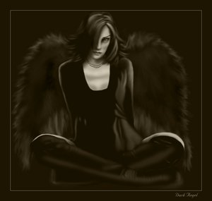242044_The_Dark_Angel.jpg (300x285, 8Kb)