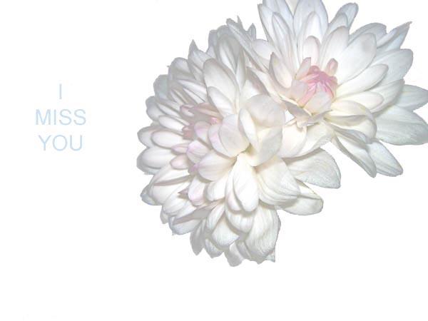 miss U.jpg (600x450, 35Kb)