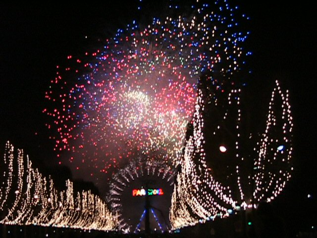 New%20Year%20fireworks.jpg (640x480, 91Kb)