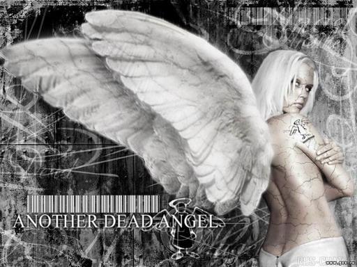 3263843_angel44r.jpg (512x384, 77Kb)