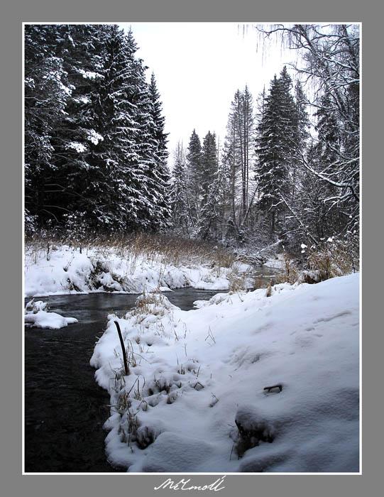 зимняя открытка.jpg (541x700, 123Kb)