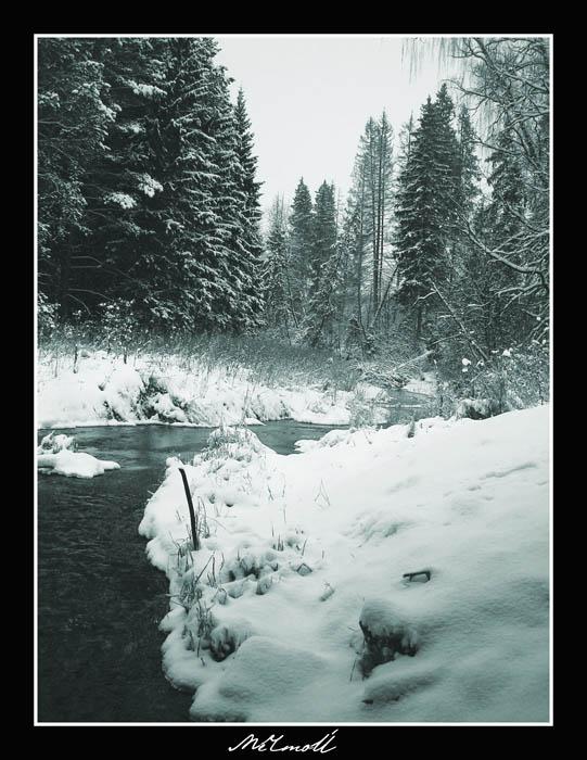 зимняя открытка1.jpg (541x700, 105Kb)
