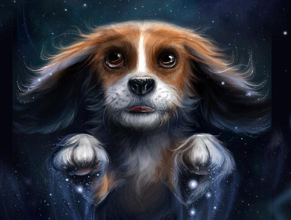 dog4.jpg (600x454, 60Kb)