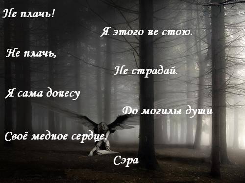 4053204_6mednoe_serdce.jpg (500x375, 30Kb)