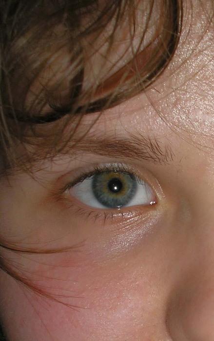 глаза.jpg (439x699, 96Kb)
