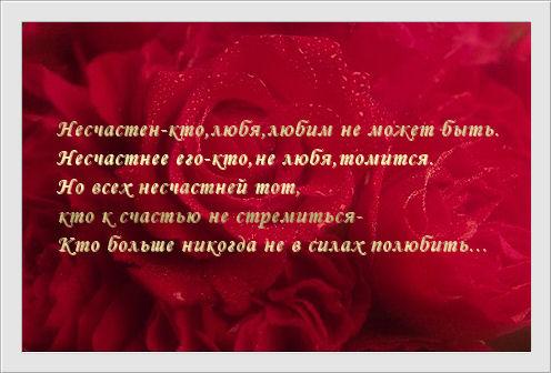 858810_849469_759806_carte_rose0002.jpg (496x336, 41Kb)
