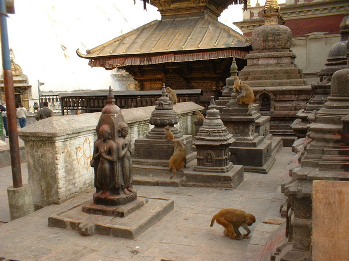 Nepal 112.jpg (700x525, 92Kb)