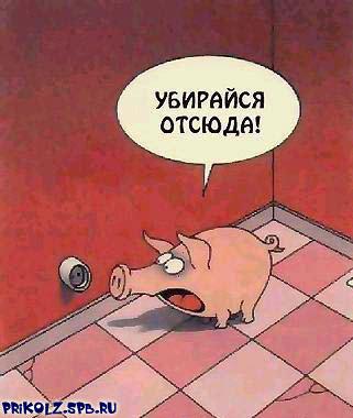 prikols_com_ru_19p.jpg (321x380, 27Kb)