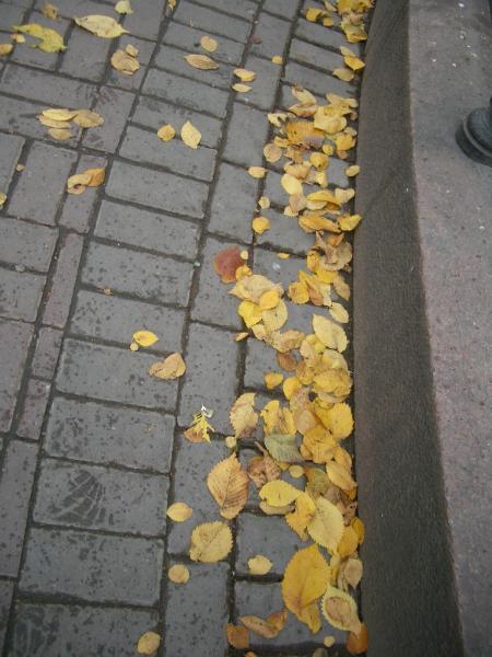 leafs.jpg (450x600, 45Kb)