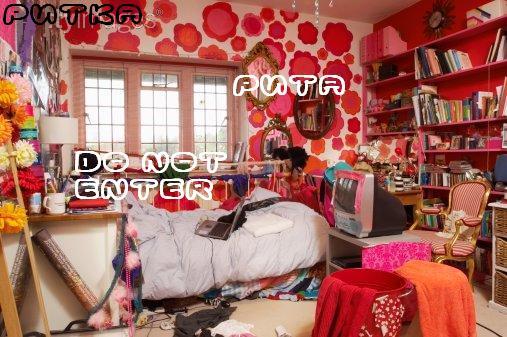 My Room Essay