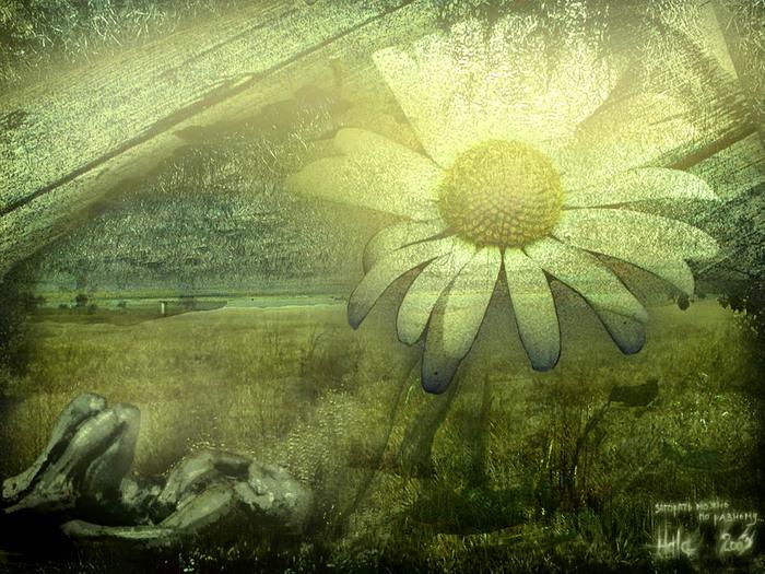 http://img.liveinternet.ru/images/attach/2/15123/15123874_04.jpg