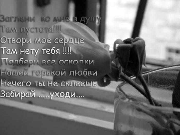 4314623_3813446_roza.jpg (700x525, 33Kb)