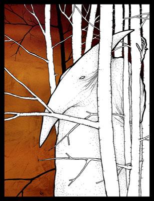 forest.jpg (308x400, 41Kb)