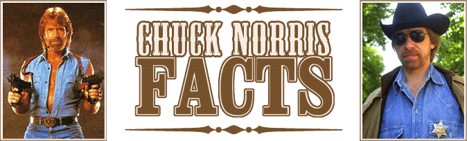 chuck_norris_facts.png (674x204, 50Kb)