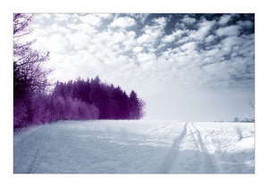 4715169_remember_cold_winter_days_by_ssilence.jpg (300x210, 15Kb)