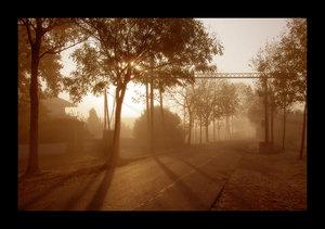 5078952_morning_fog_by_ssilence.jpg (300x211, 17Kb)
