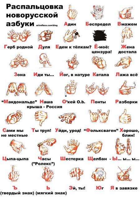 www_bibka_ru_2006010901389.jpg (450x636, 56Kb)