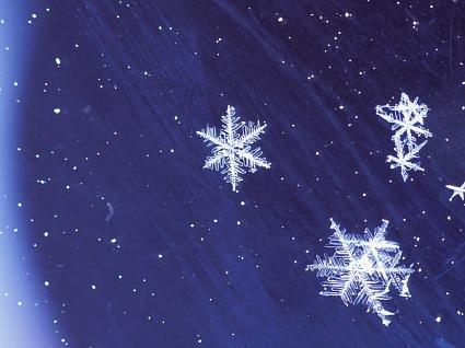 снежок.jpg (425x318, 40Kb)